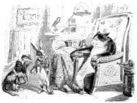 Кот, Ласочка и Кролик