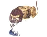 Толстой - Лев и собачка