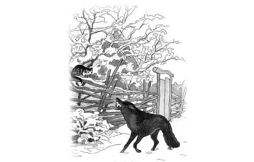 Волк и кот